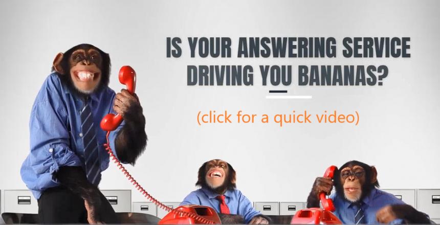 monkey's answering phones